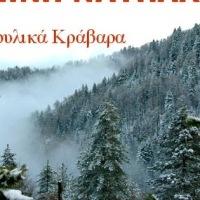 το χιόνι στο γραφικό χωριό Ελατόβρυση της ορεινής Ναυπακτίας